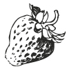 7-Erdbeere